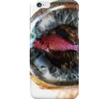 Fish-eye lens iPhone Case/Skin
