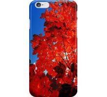 Hotter than hell, Burn you like the midday sun iPhone Case/Skin