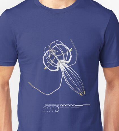 Radiata Series 001-2013 (gray) Unisex T-Shirt