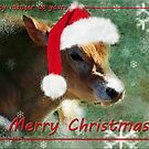 From my manger to yours....... by Bine