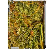 Осеннее свидание or When Summer meet Fall . iPad Case/Skin