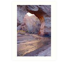 Coyote Natural Bridge Art Print