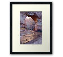 Coyote Natural Bridge Framed Print