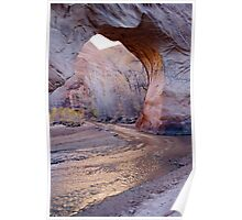 Coyote Natural Bridge Poster
