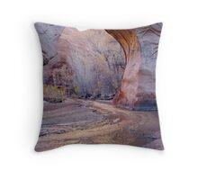 Coyote Natural Bridge Throw Pillow