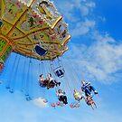 Carousel Fun! by Sally Green
