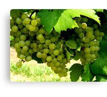 Green Grapes  ^ Canvas Print