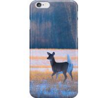 Elegance of a deer  iPhone Case/Skin