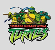 Ninja Turtles by canozel