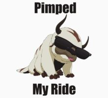 Pimped My Ride (Appa) by chrissy42