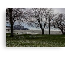 Hidden In The Trees Canvas Print