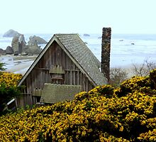 The Chimney...Bandon, Oregon by trueblvr