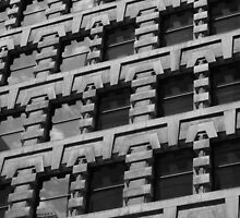 Fenestration Frustration by artkitecture