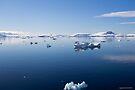 Reflecting on Antarctica 042 by Karl David Hill