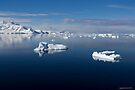 Reflecting on Antarctica 043 by Karl David Hill