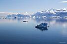 Reflecting on Antarctica 046 by Karl David Hill