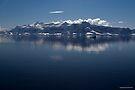 Reflecting on Antarctica 047 by Karl David Hill
