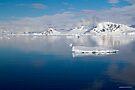 Reflecting on Antarctica 048 by Karl David Hill