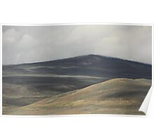 The Land Scape Poster