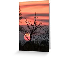The Last Sun Greeting Card