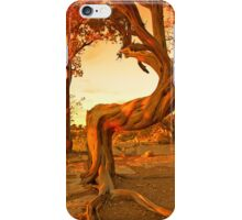 Sunset Tree iPhone Cover iPhone Case/Skin