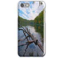 Water Logged iPhone Case iPhone Case/Skin