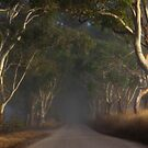 ~ The Road II ~ by LeeoPhotography