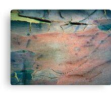 Bark Abstract # 11 Canvas Print