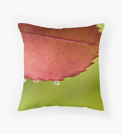 Christmas Colours Throw Pillow