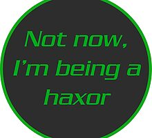 Not now, I'm Being A Haxor by ricerocca