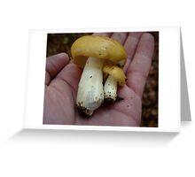 Russula ochroleuca- Ochre Brittlegill in my hand Greeting Card