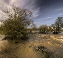 The Floods at Stoke Canon  by Rob Hawkins