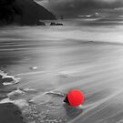 kerry Buoy - Cinnard Co. kerry by Pascal Lee (LIPF)