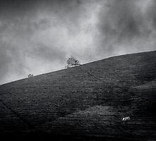 Silent Chaos by Biren Brahmbhatt
