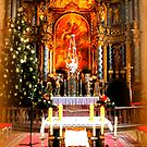 Pilgrimage church of the Assumption ~ The Altar by ©The Creative  Minds