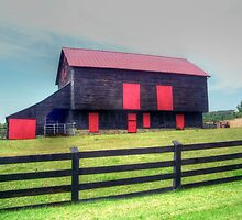 Brown And Red Barn by James Brotherton