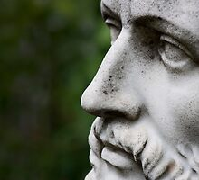 Sophocles Profile by Gary Chapple