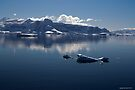 Reflecting on Antarctica 051 by Karl David Hill