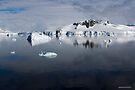 Reflecting on Antarctica 057 by Karl David Hill