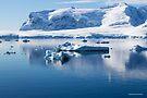 Reflecting on Antarctica 058 by Karl David Hill