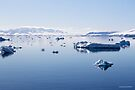 Reflecting on Antarctica 059 by Karl David Hill