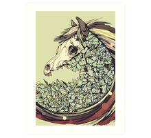 Beautiful Horse Old Art Print