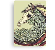 Beautiful Horse Old Canvas Print
