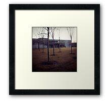 ||| Framed Print