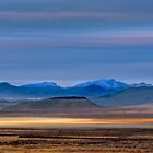 Wide Open Spaces by Dianne Phelps
