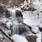 Winter Scene At Tuscarora Falls by Gene Walls