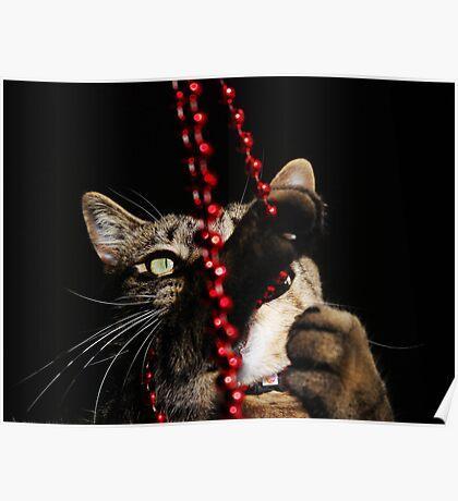 Beads.... Glorious Beads!!! Poster