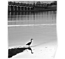 Heron - Kincardine Bridge Poster