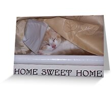 A cats home sweet home Greeting Card
