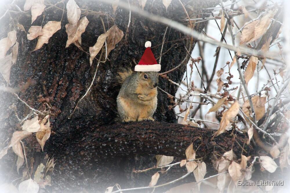 A Christmas hug by Susan Littlefield
